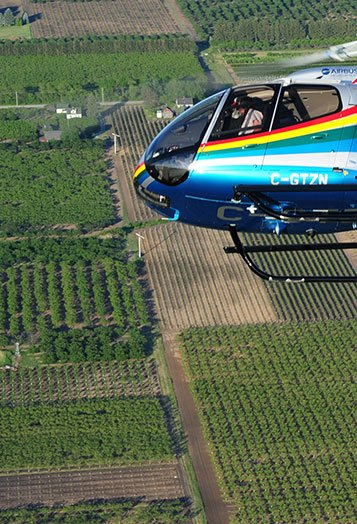 Niagara Helicopters Winery Tour